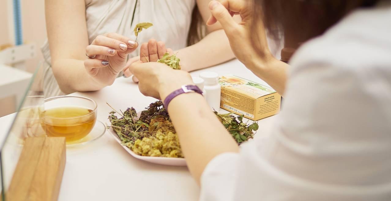 Фитотерапия — лечение травами